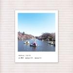 春の音連れ [ 9 / 22 ]