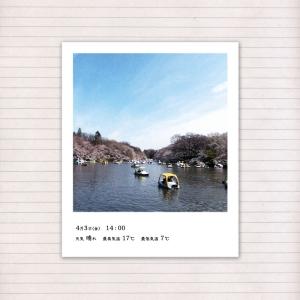 春の音連れ [ 10 / 22 ]
