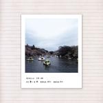 春の音連れ [ 11 / 22 ]