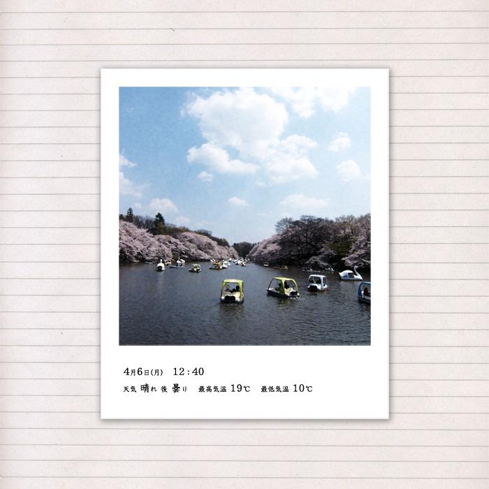 春の音連れ [ 13 / 22 ]