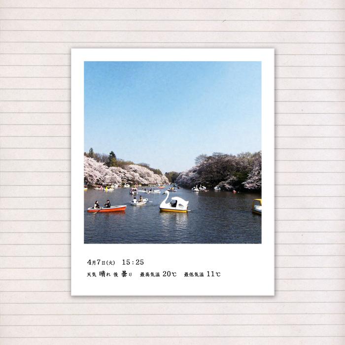 春の音連れ [ 14 / 22 ]