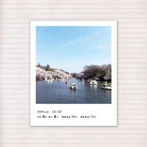 春の音連れ [ 15 / 22 ]