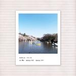 春の音連れ [ 16 / 22 ]