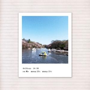 春の音連れ [ 17 / 22 ]