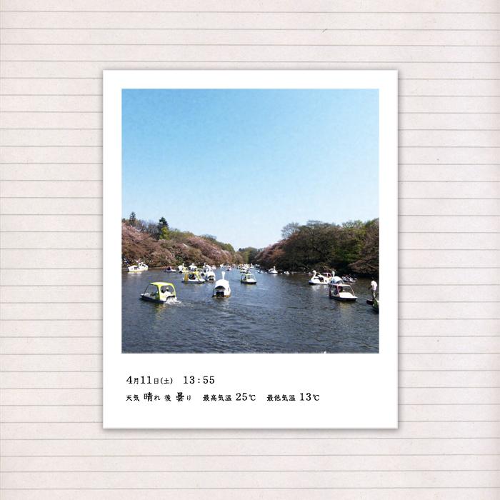 春の音連れ [ 18 / 22 ]