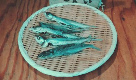 Fish on bamboo basket