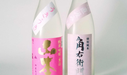 Spring seasonal sake