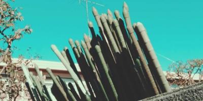 Fake bamboo sticks