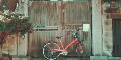 Old gate and bike