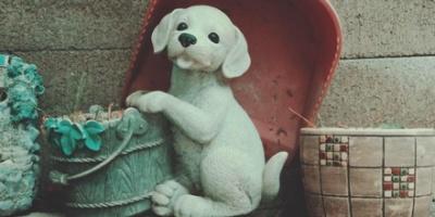 White dog figurine