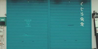 Blue roller door